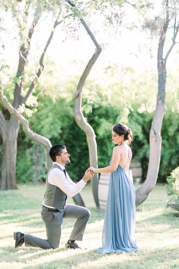 Medella Vina Tucson Surprise Proposal of Couple Wearing Dusky Blue Dress and Gray Suit | Tucson Wedding Photographer | West End Photography