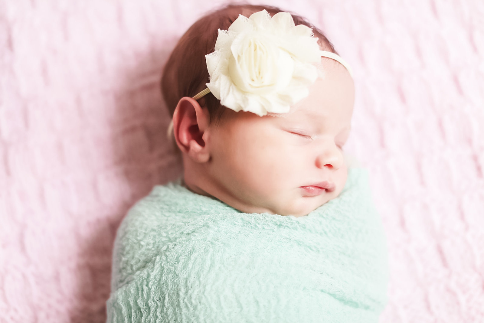 35aldie_va_newborn_portraits_vines14_copy