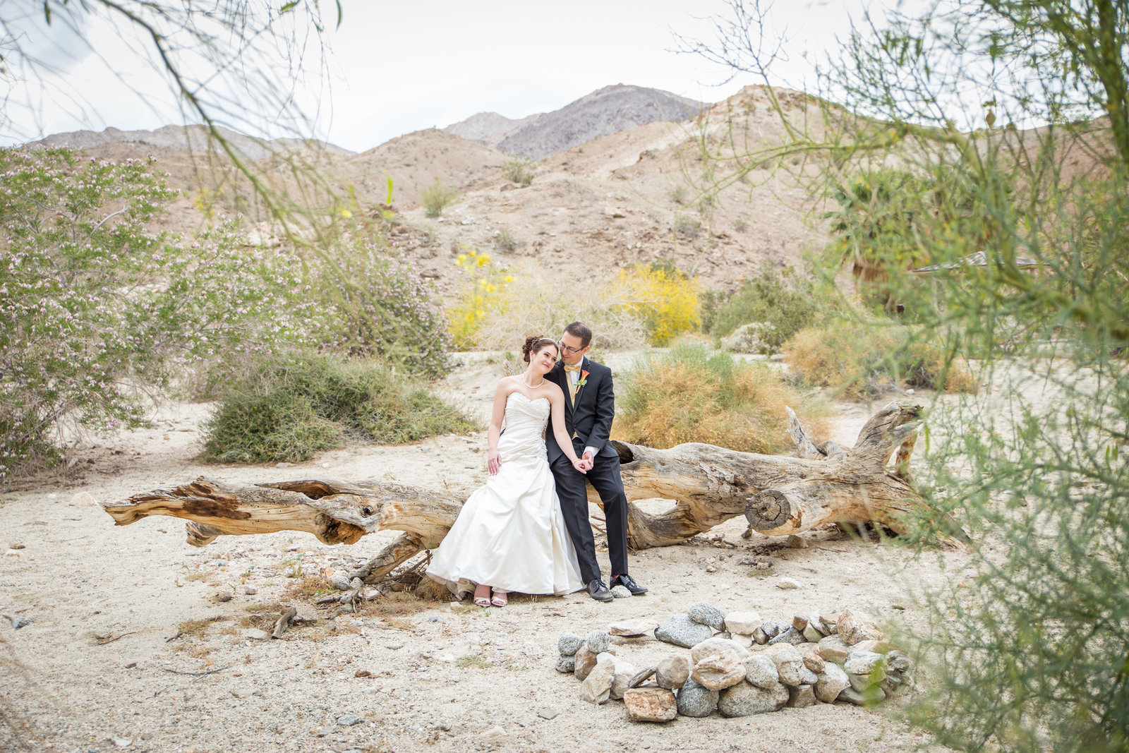 Palm Desert Bride and Groom portraits
