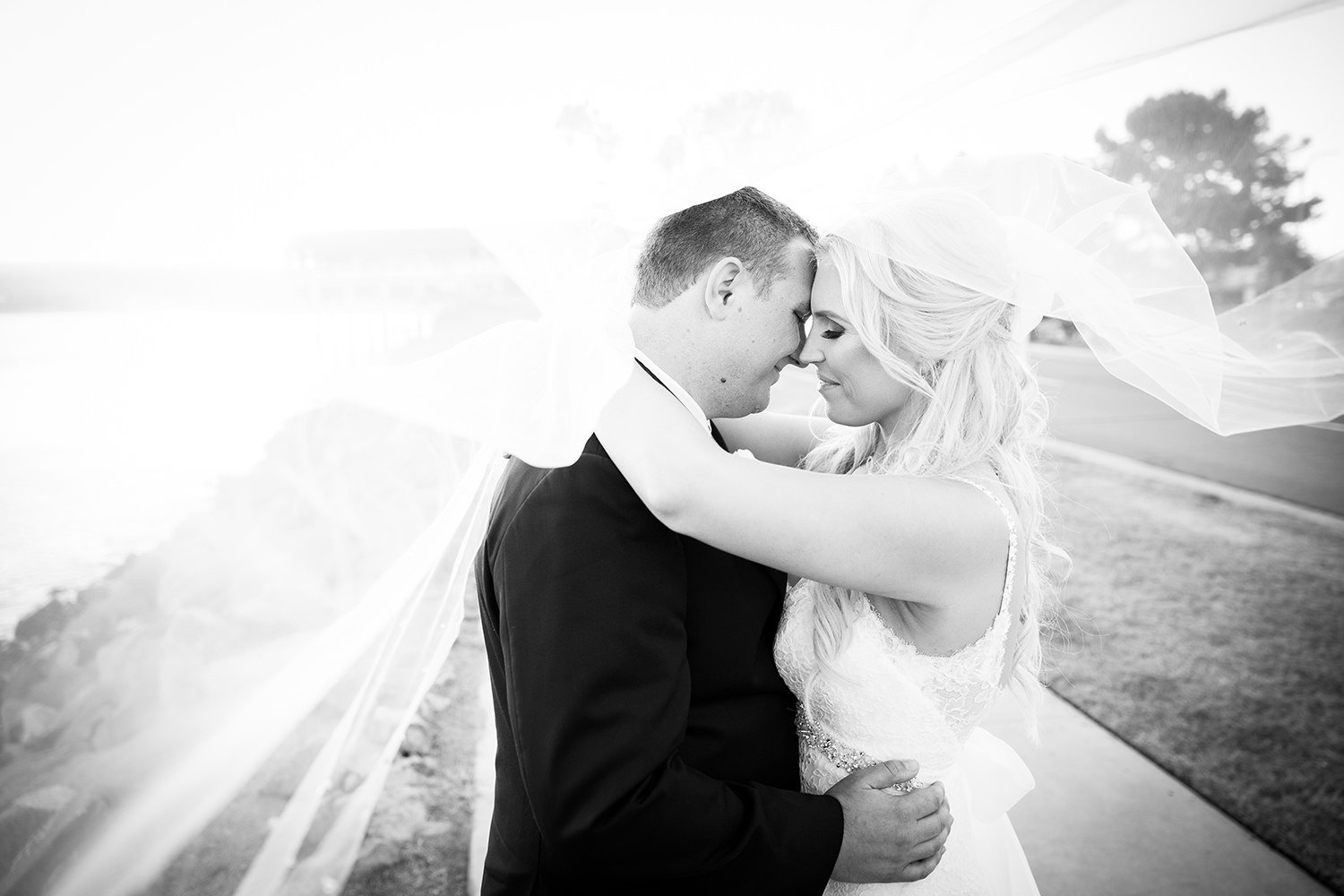 beautiful black and white of bride and groom and veil over both