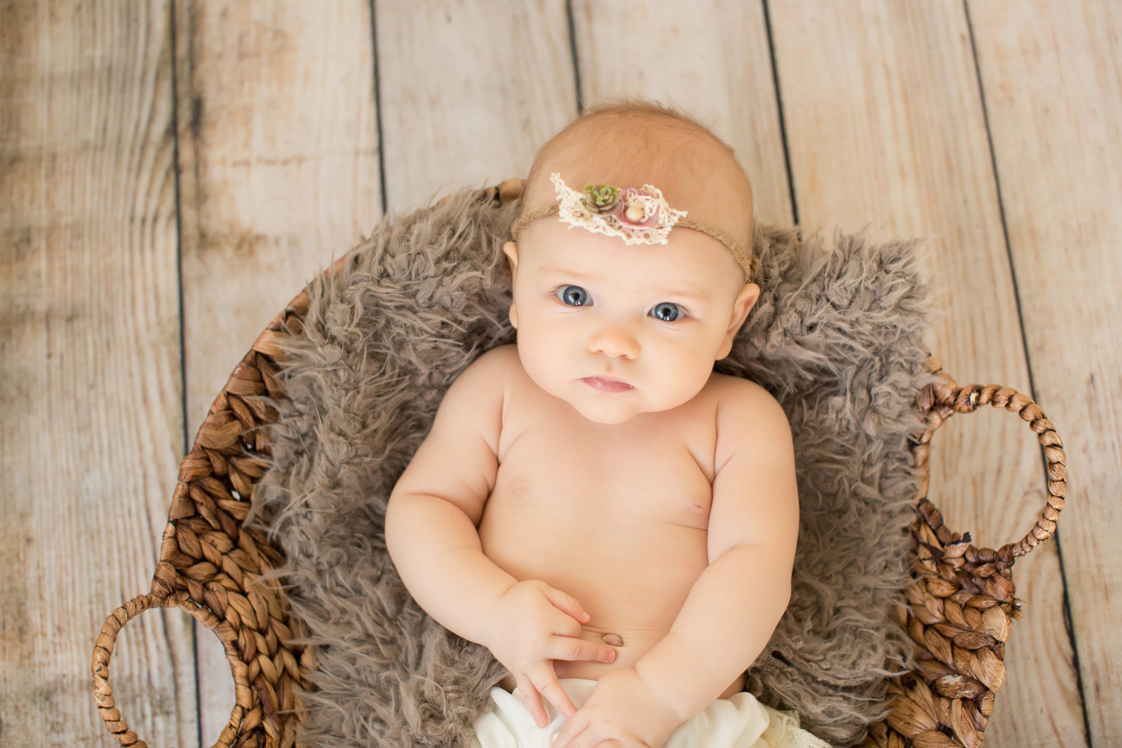 Baby Girl 4 month portraits