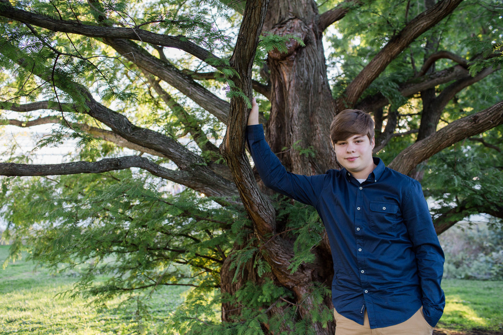 senior boy leans up against tree at phipps conservatory in oakland
