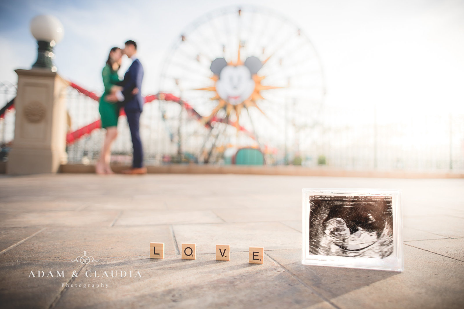 Huang Disneyland Maternity photo 10
