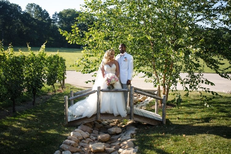 Weddings at Morais Vineyards & Winery dc wedding planner