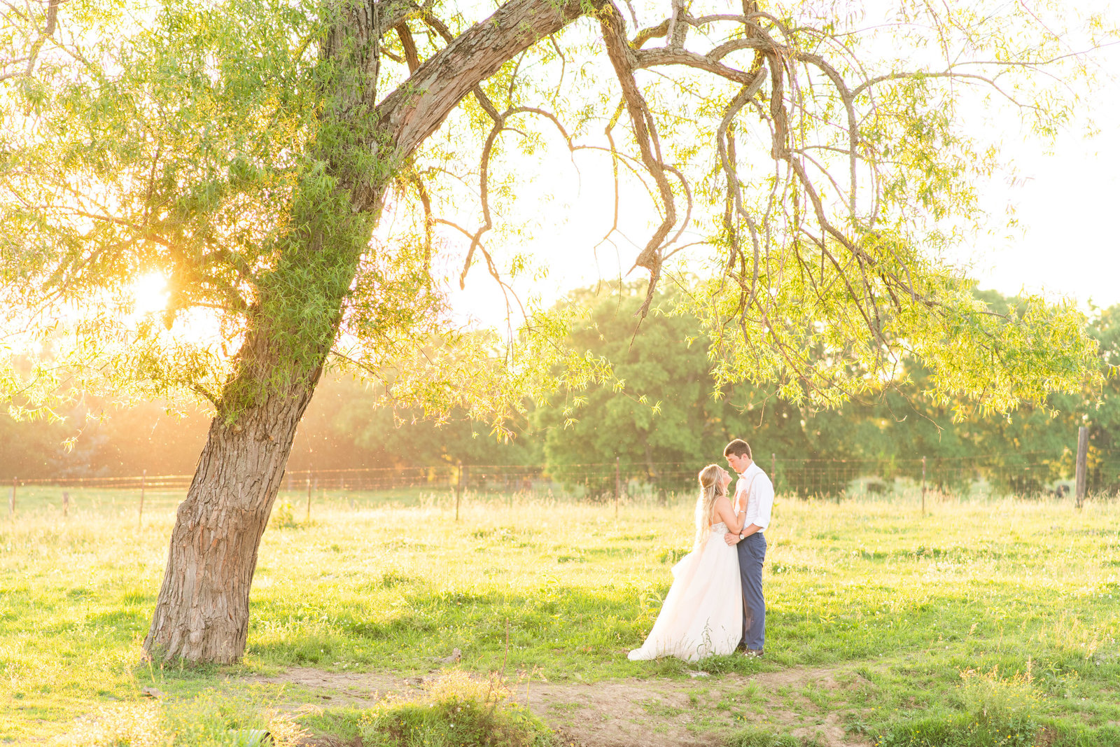kissing bride and groom  portrait on private farm in Tennessee
