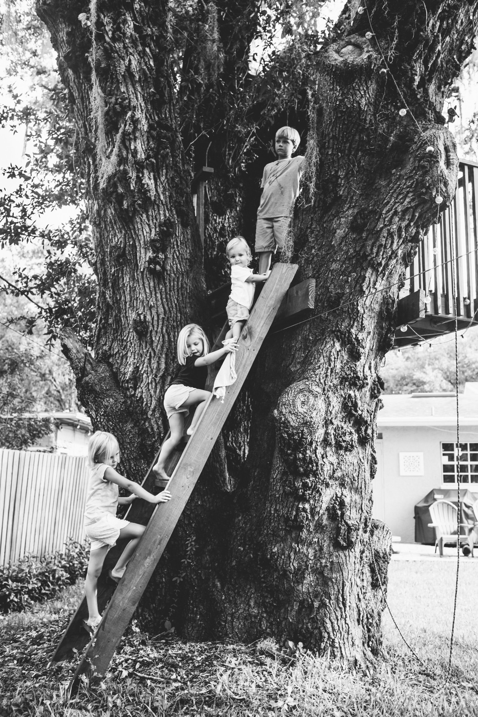 Kids climbing ladder to tree house