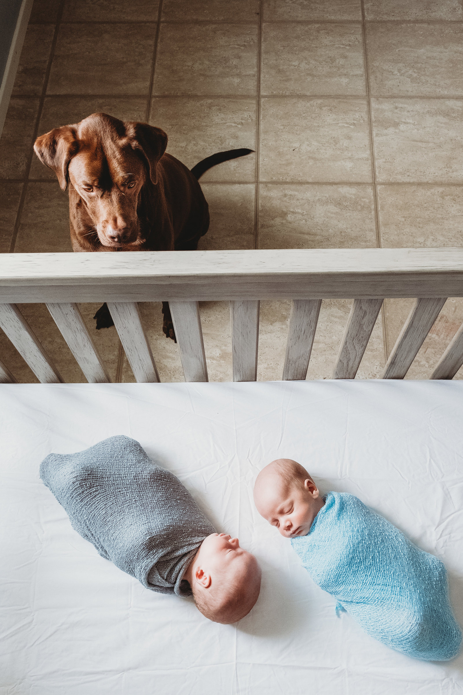 Andia newborn Lifestyle Photo session Brooke Flanagan Photography-2