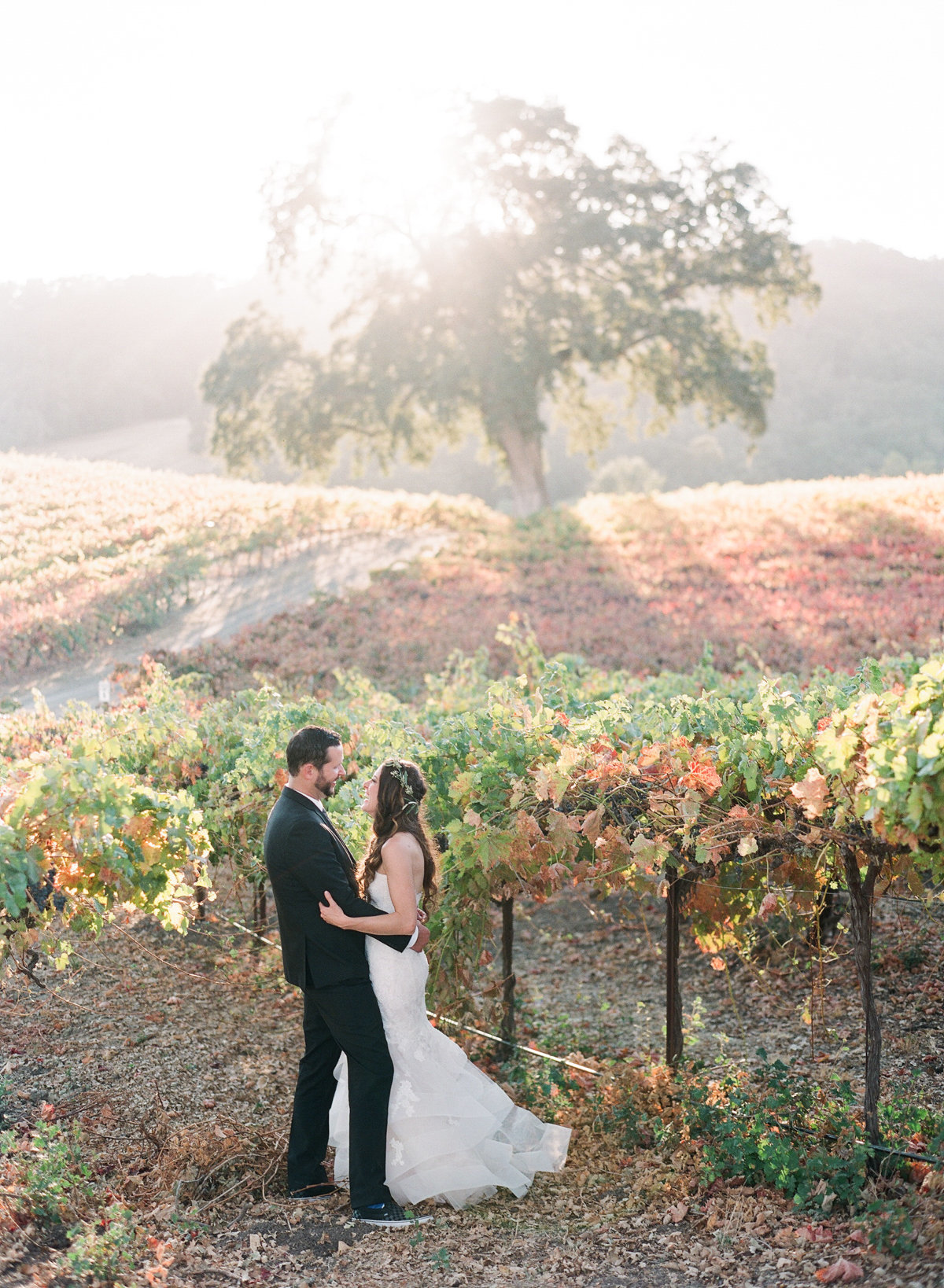 HammerSky Vineyards Wedding | Wine Country Wedding | California Wedding Photography | California Film Photographer | Paso Robles | Molly Carr Photography