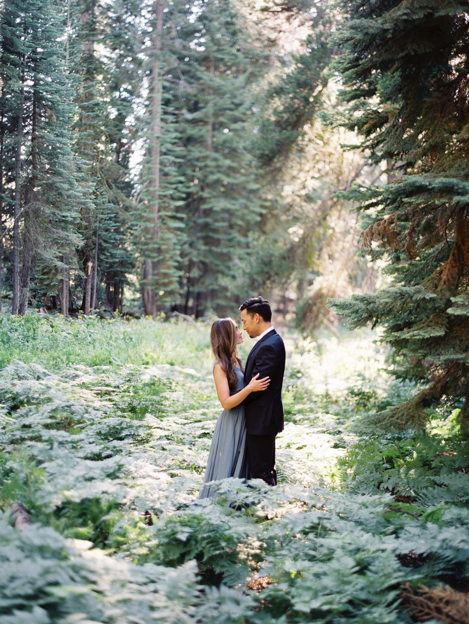 Engagement Session in Yosemite National forest