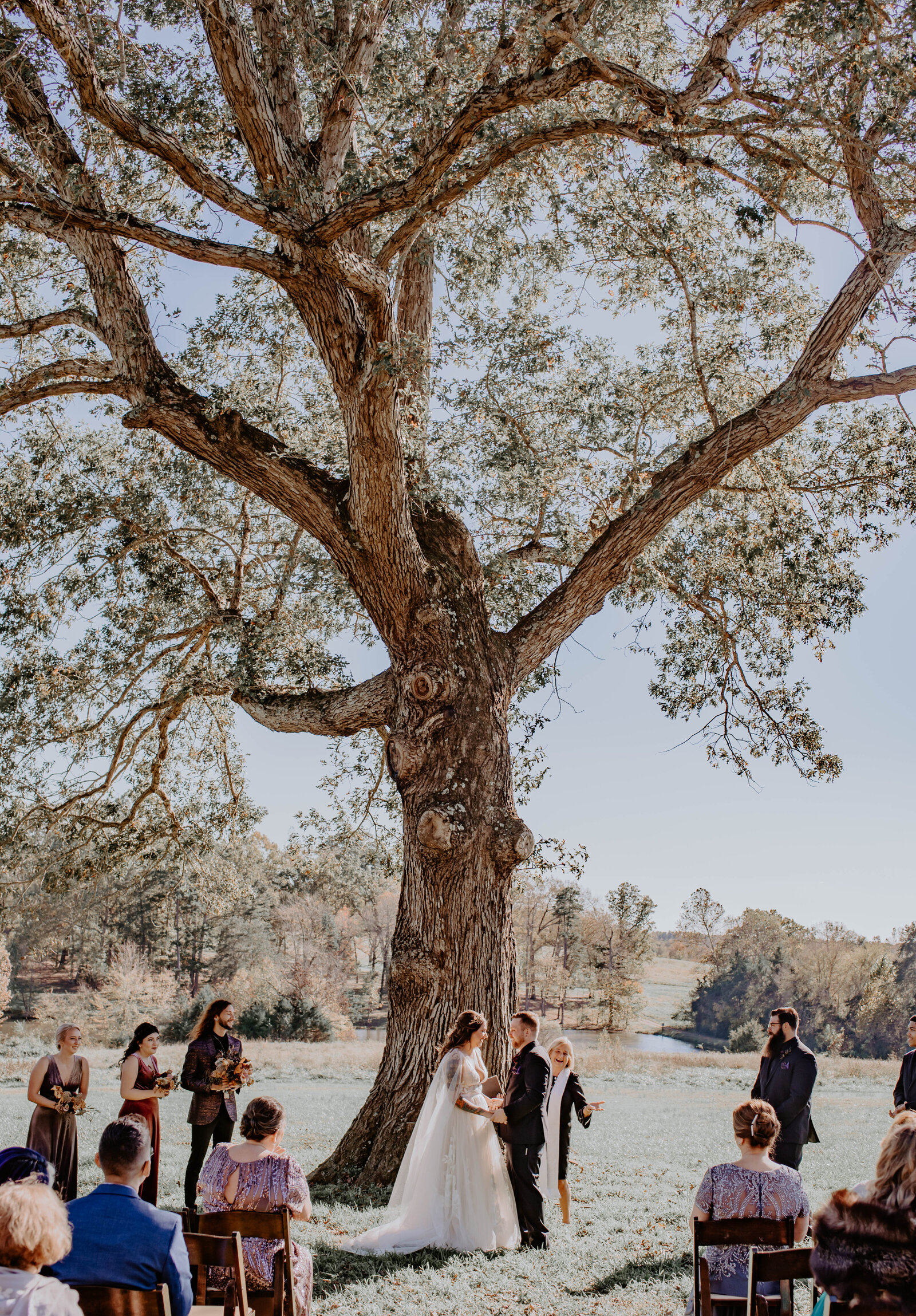 Intimate wedding ceremony in front of huge tree at Summerfield Farms, Summerfield NC