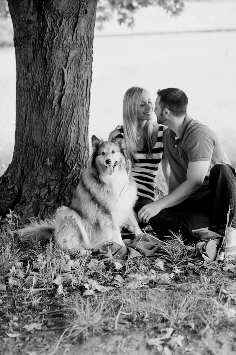 Engaged Couple with Shetland Sheepdog, Brandywine Creek State Park, Delaware