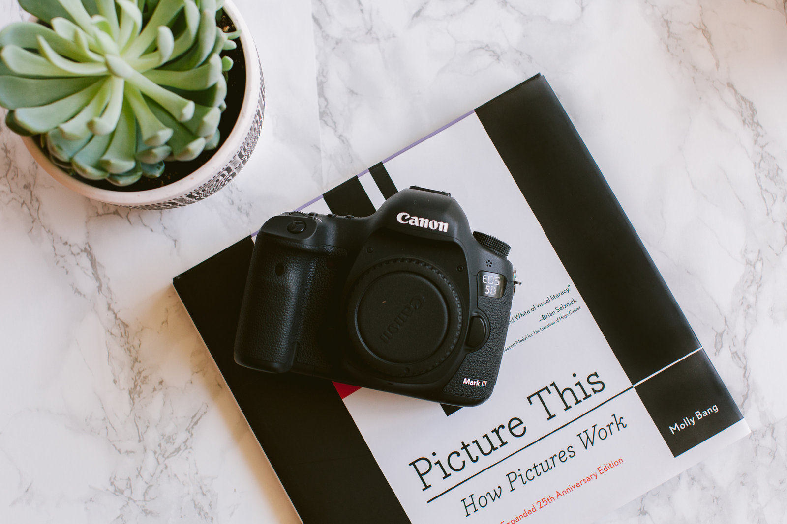 Canon camera and Picture This book