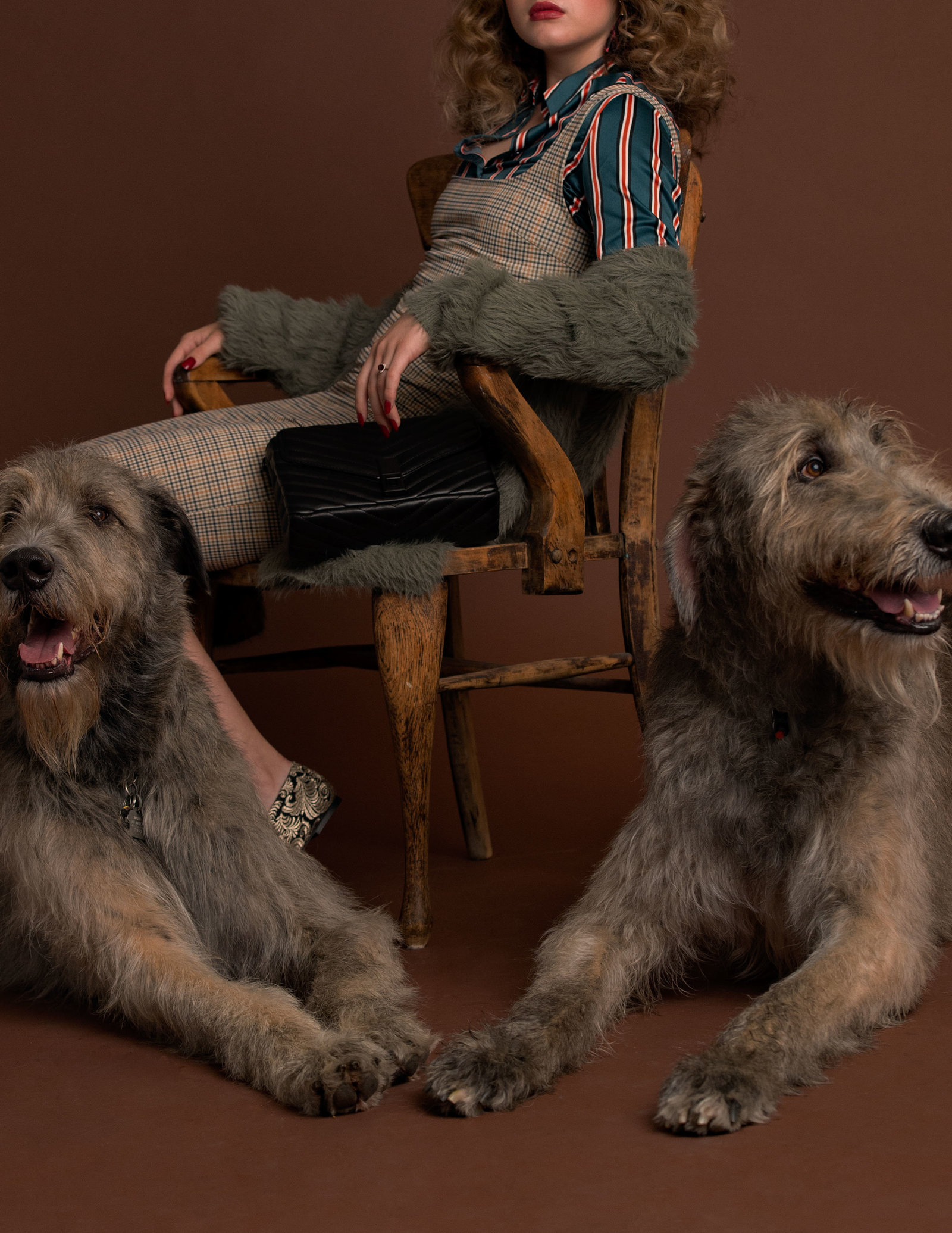 Dog-Fashion-Editorial-by-Brittany-Gawley-Photography-Westboro-Studio-11