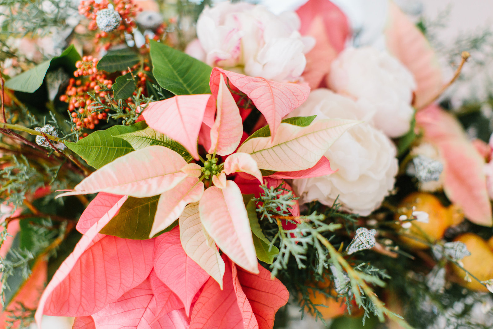 Holiday Centerpiece Pink Poinsettia