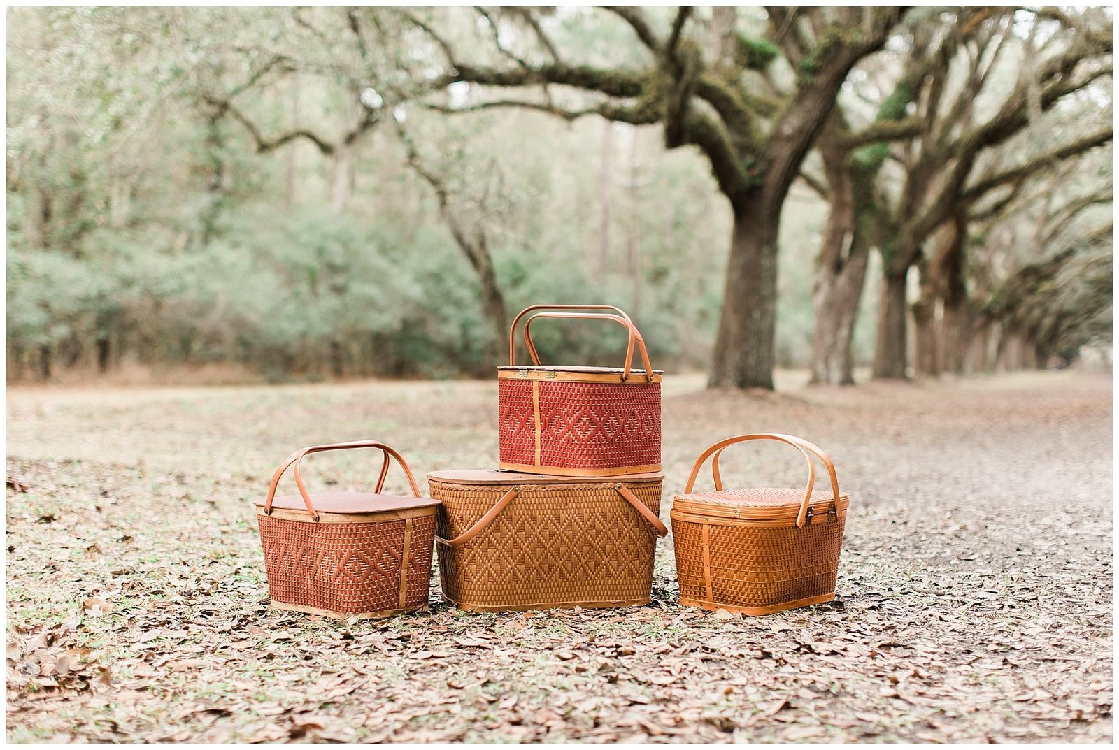 Vintage baskets under old oak trees.