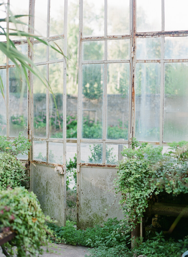 old glasshouse with greenery spilling from buckets
