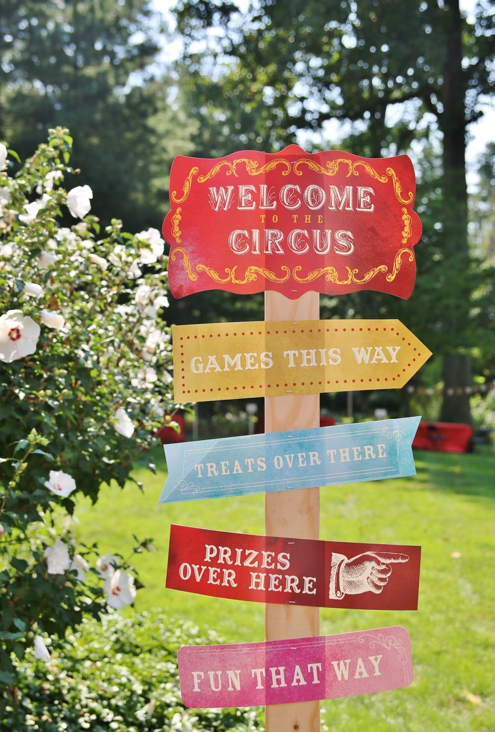ct_party_planner_circus_birthday_0015