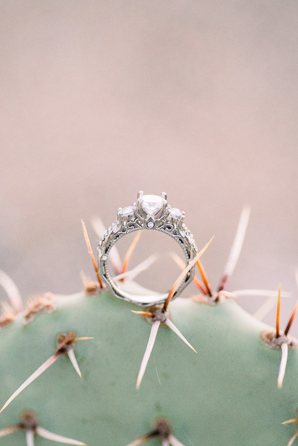 Engagement Ring on a Cactus Photo | Tucson Wedding Photographer | West End Photography