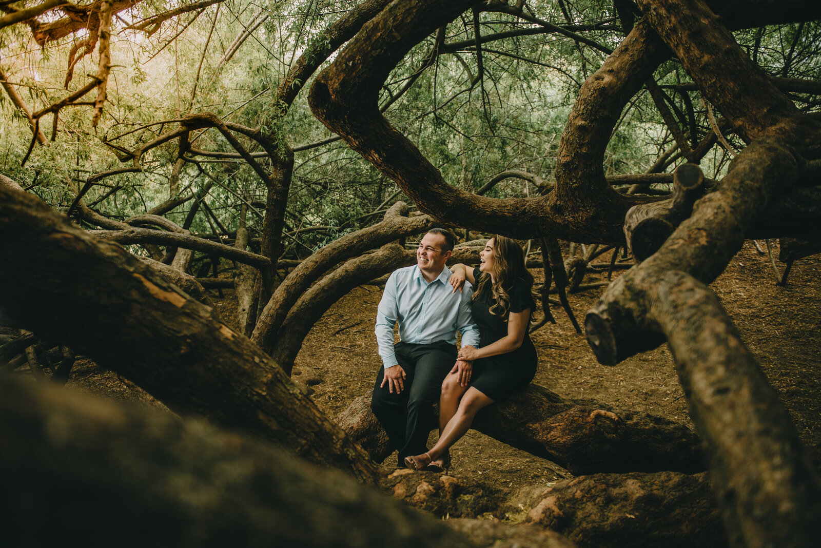 la arboretum engagement photography--102