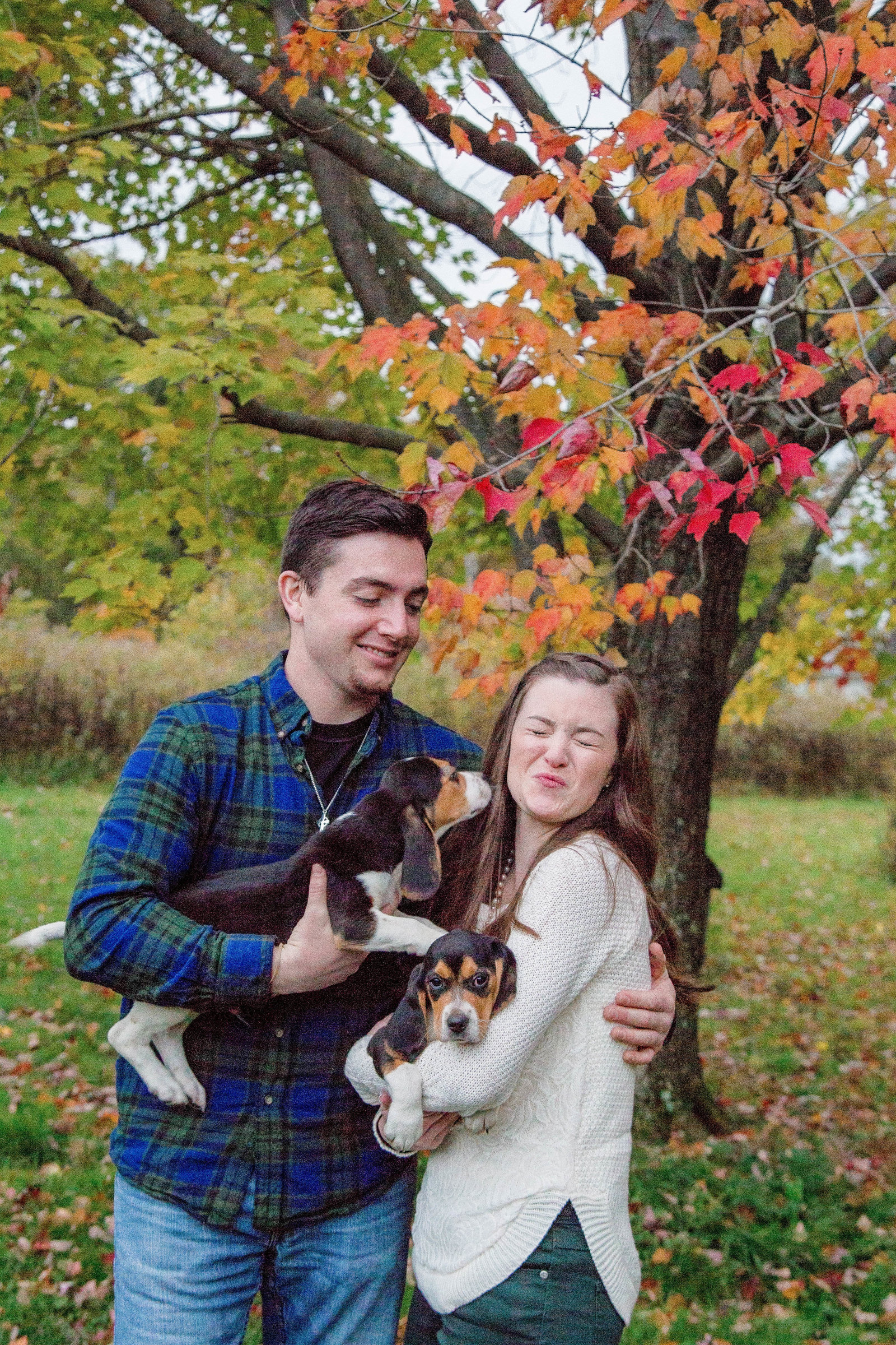 couple holds beagle puppies during their engagement session in new castle