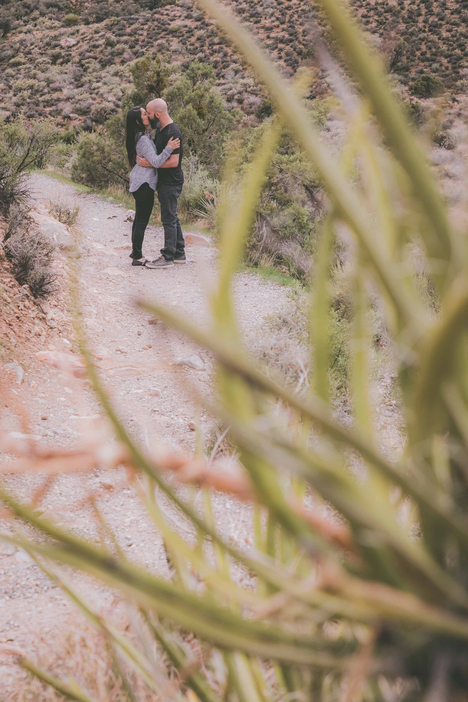 Engaged couple embrace and kiss among cacti in desert.
