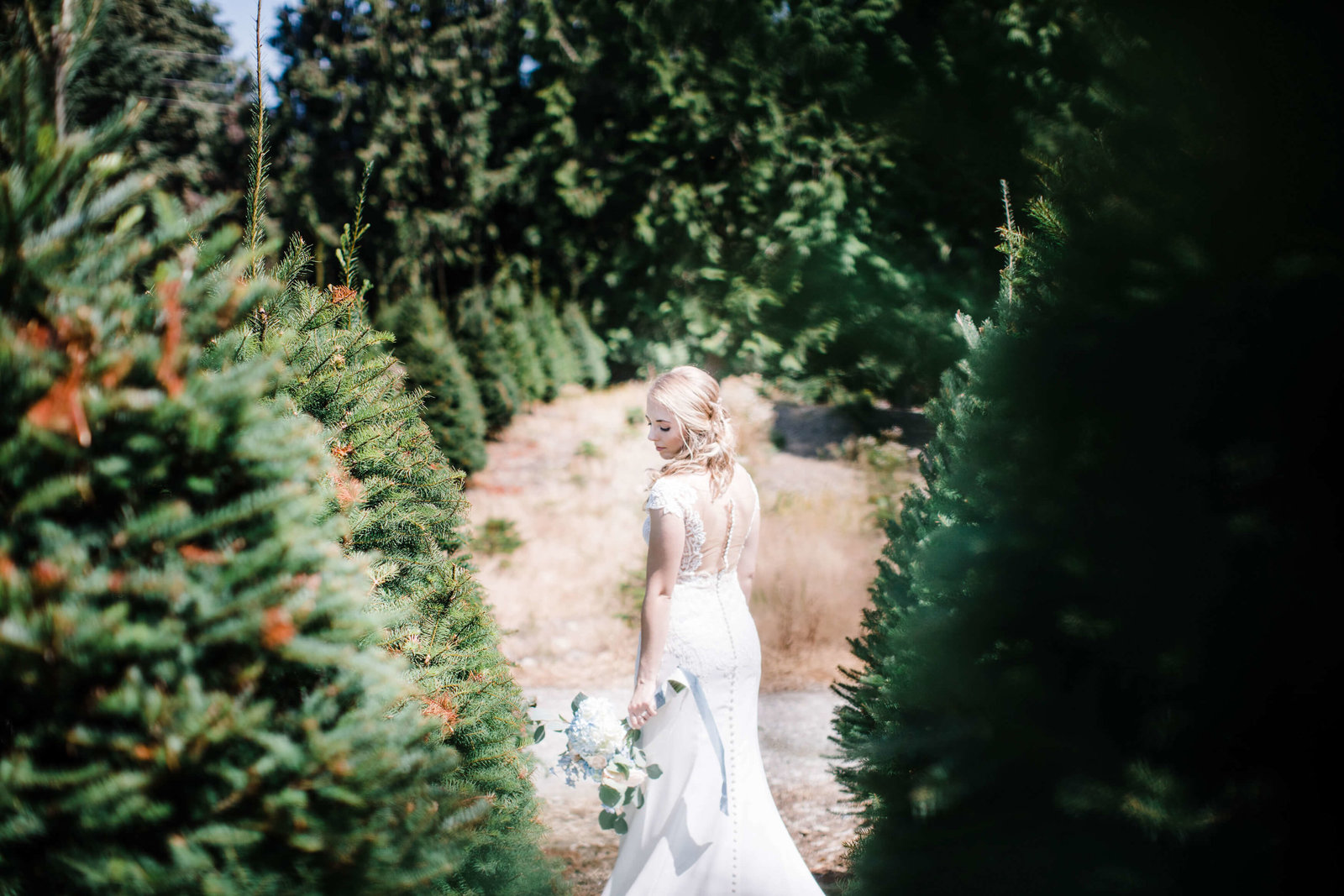 Trinity-tree-farm-wedding-photos-by-Adina-Preston-Photography-2019-175