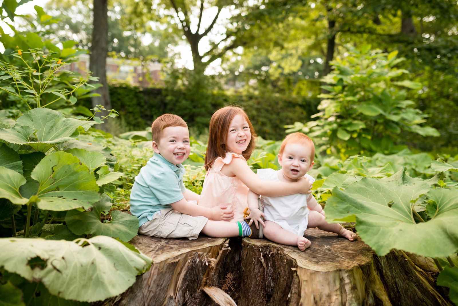 Boston-Family-Photographer-Arnold-Arboretum-JP-Session-1