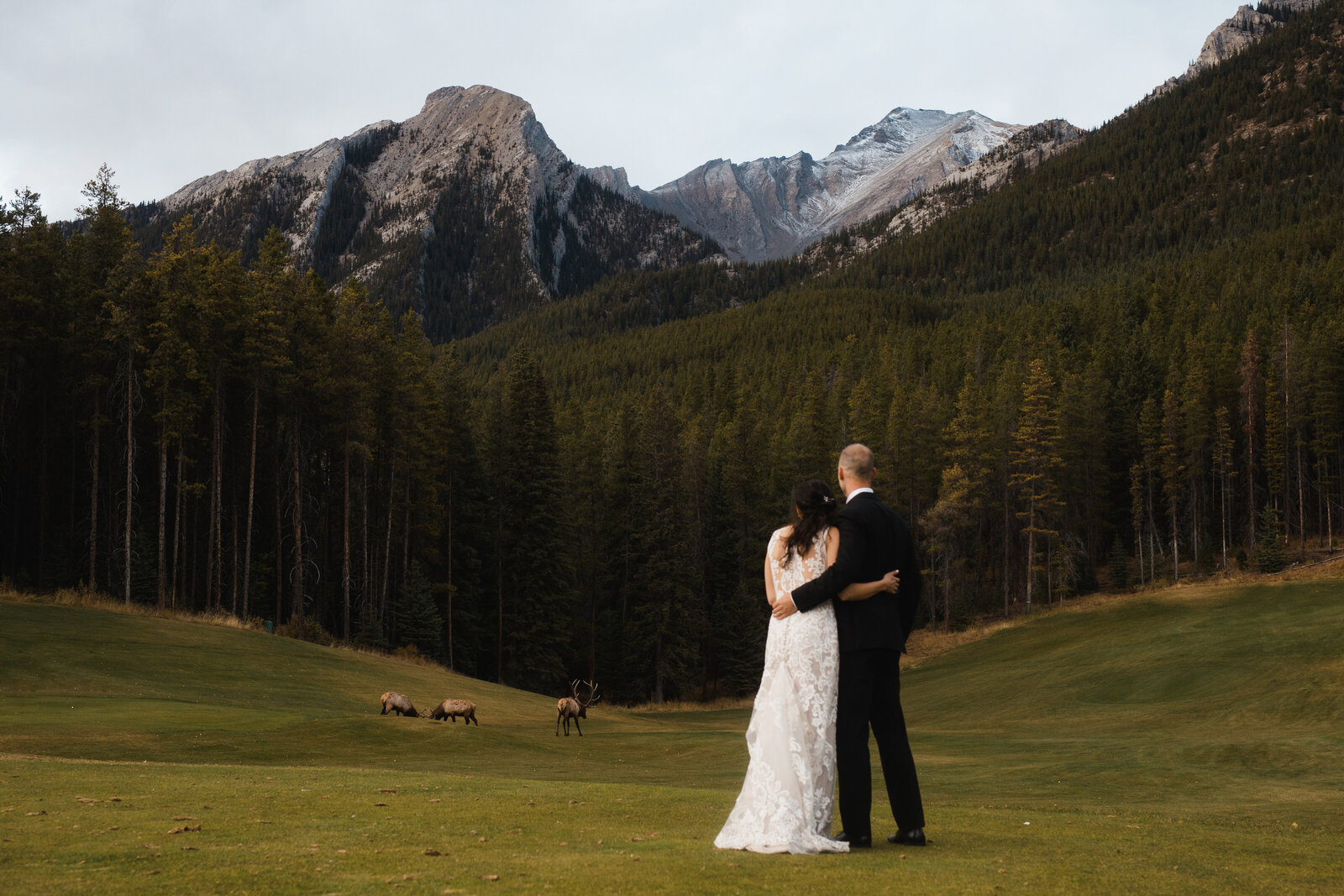 banff.wedding.photographer--523