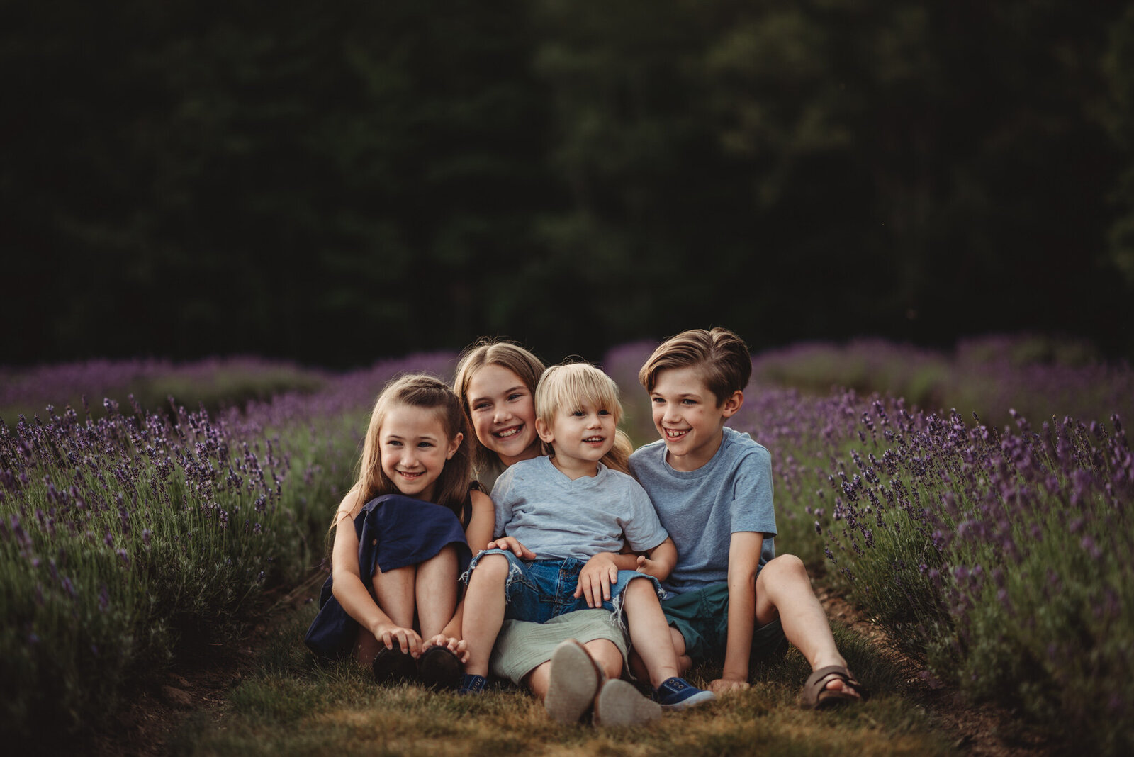 Four young siblings at a lavender field