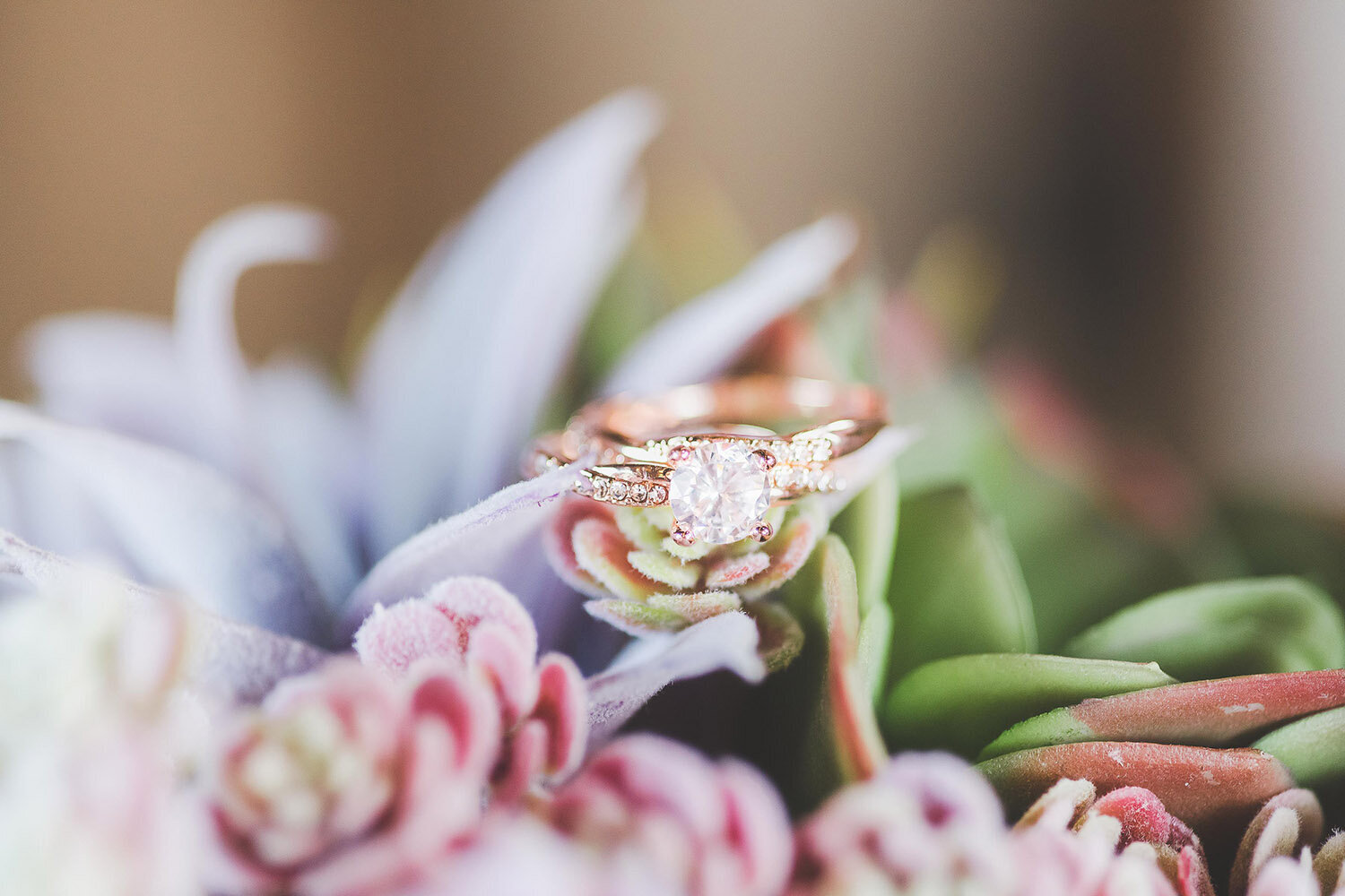 rose gold succulent wv photographer-52