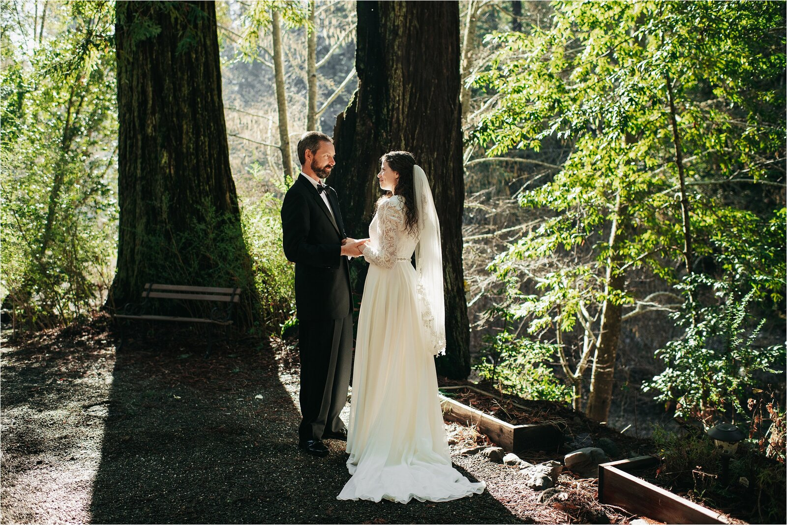 Redwood Forest California Sonoma County Wedding Photos_0033