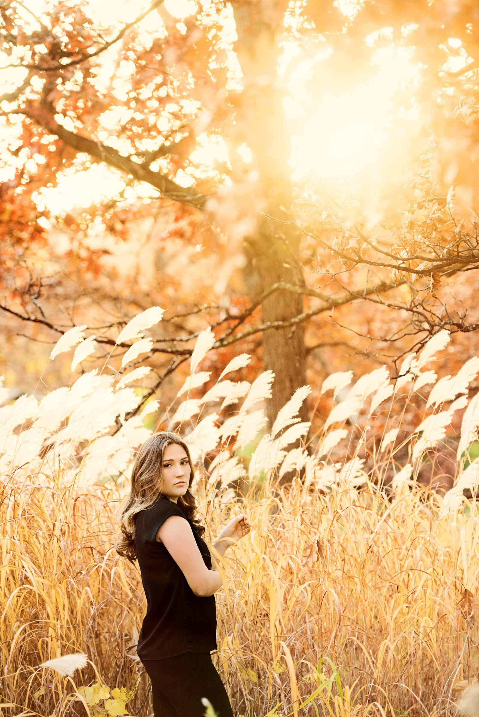 Autumn sunset golden light senior picture with tall grasses