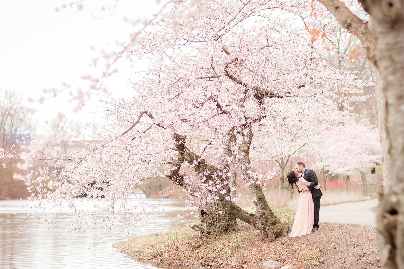cherry-blossom-engagement_0007