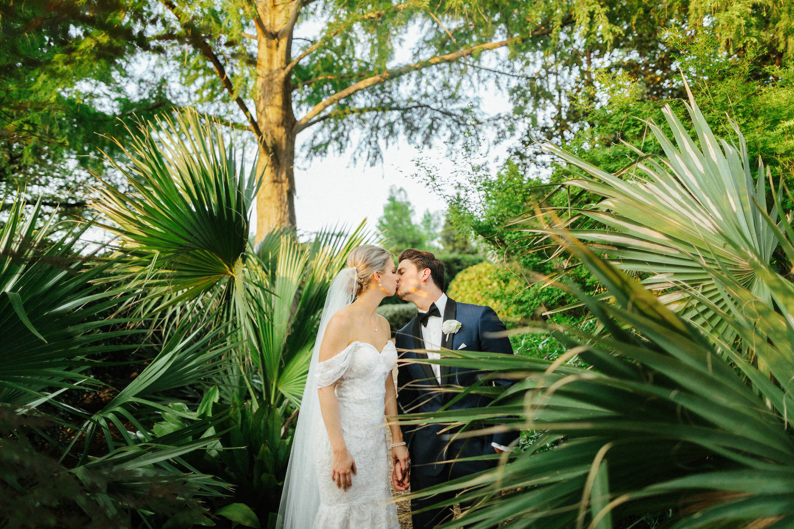 bride and groom kissing in front of green palm plants