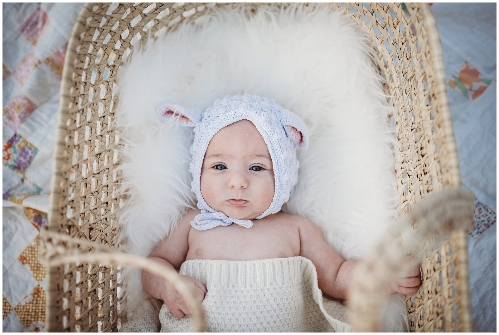newborn baby girl in moses basket Emily Ann Photography Seattle Photographer