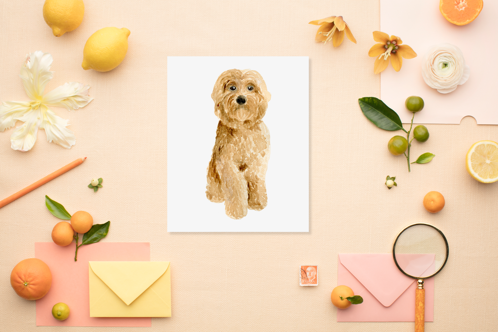 goldendoodle-pet-portrait-The-Welcoming-District