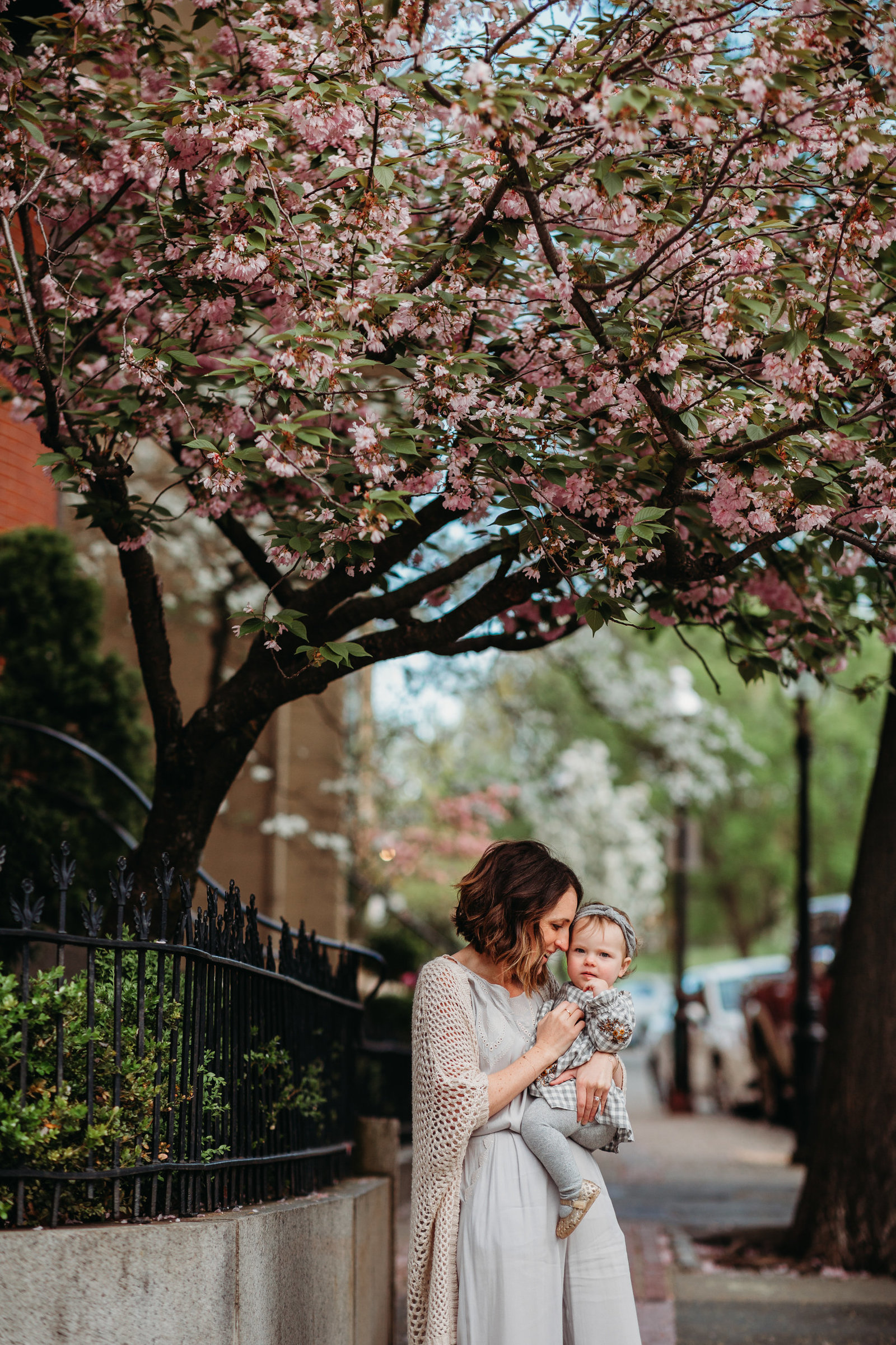 mother with long sweater snuggles toddler daughter under cherry blossom tree during charlestown family photos
