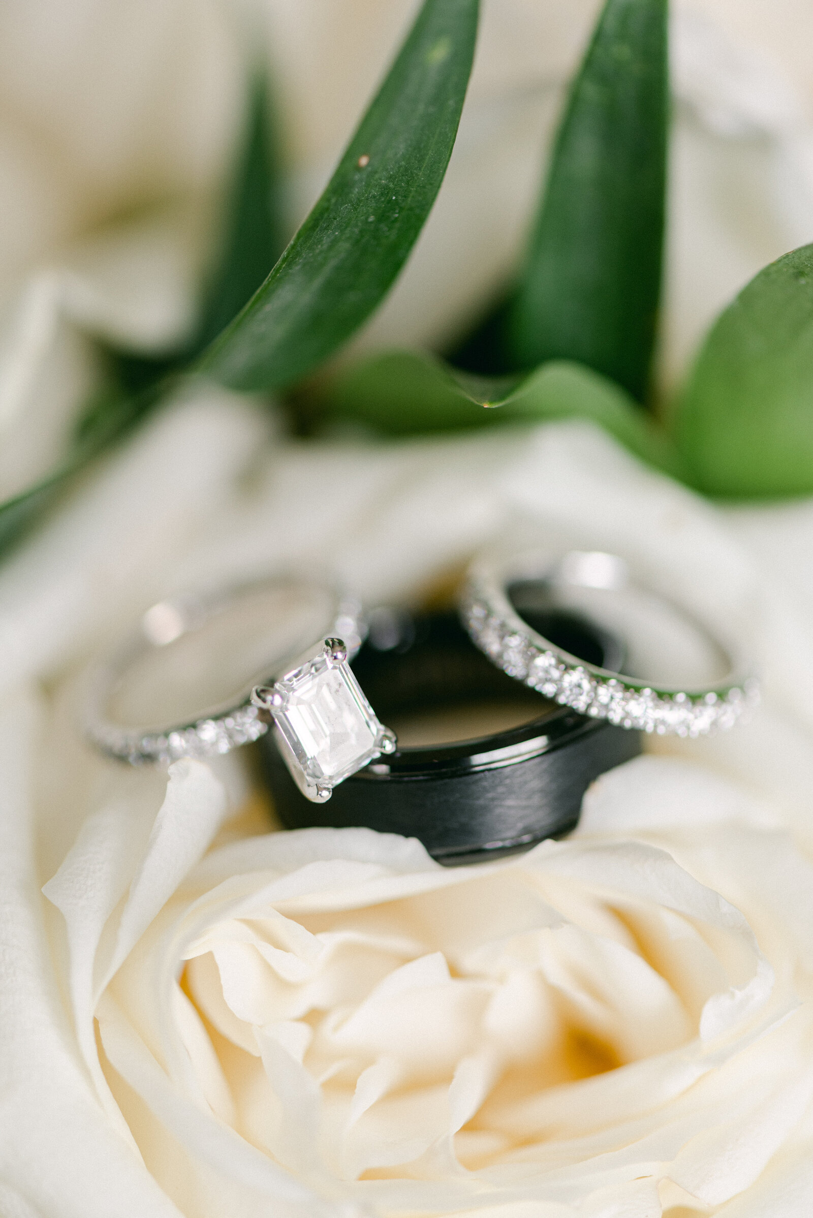 Close up photograph of wedding rings laying on white flowers in Annapolis Maryland.