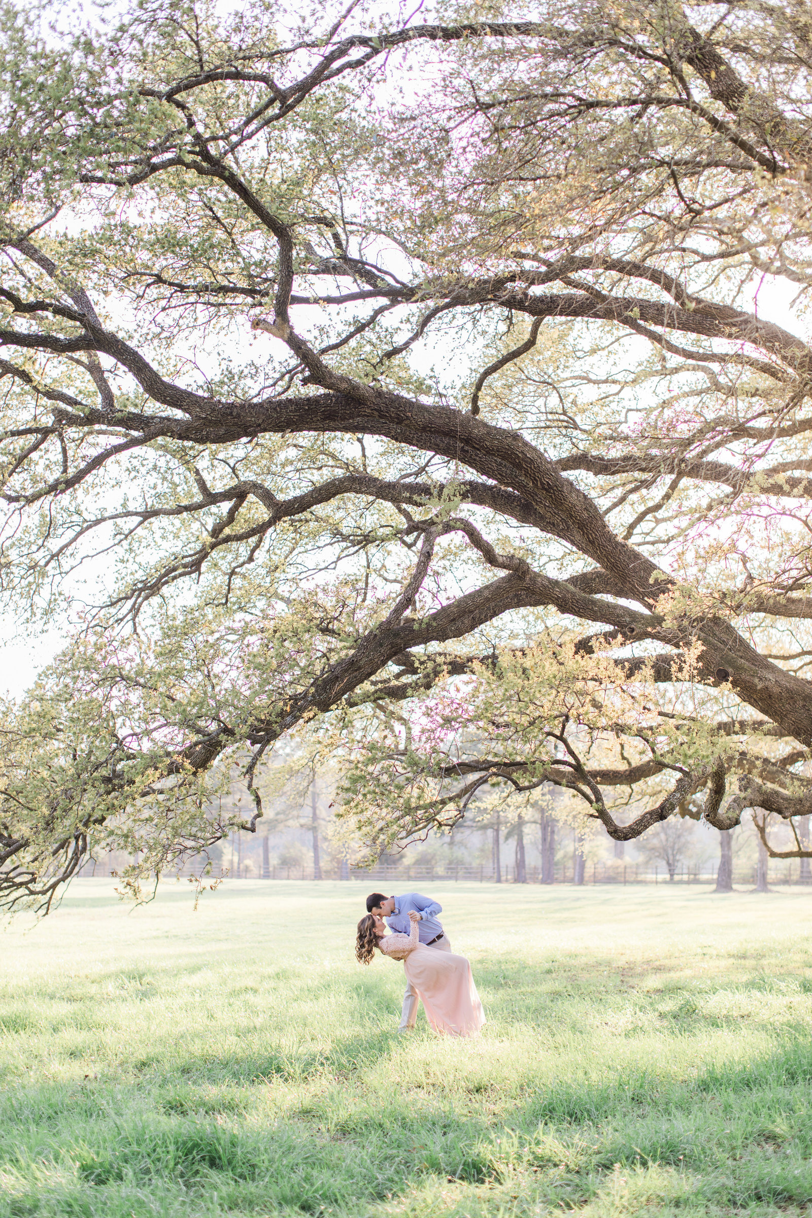 An Engaged Couple Under an Oak Tree