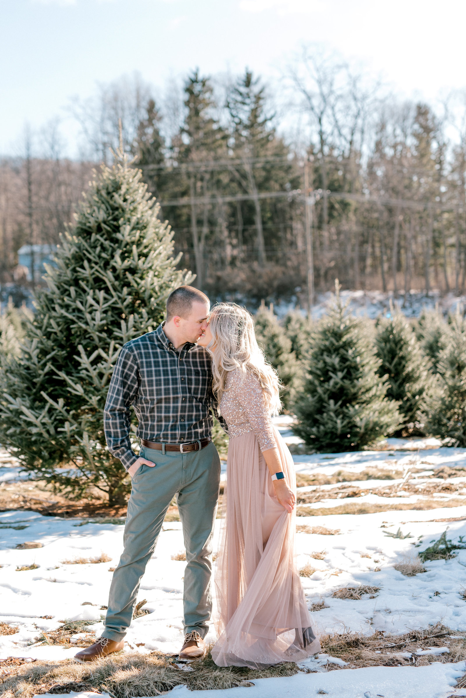 State College Engagement Session at Christmas Tree Farm