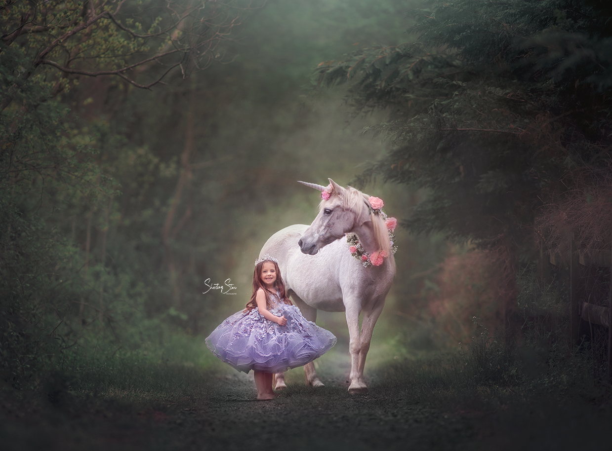 unicorn photography session, philadelphia photographer, jersey shore photographer, whimsical sessions,unicorns