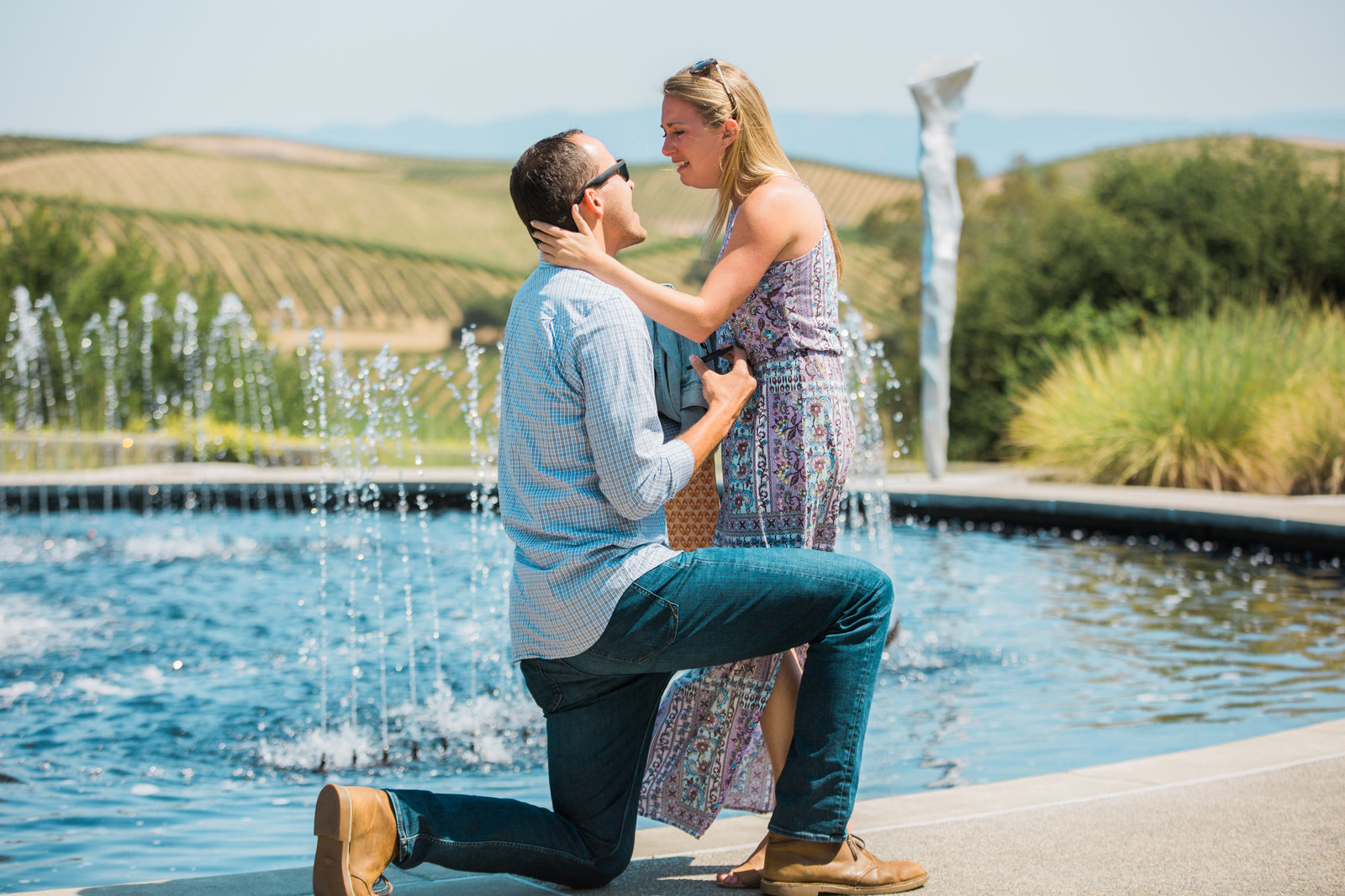 surprise proposal at artesa vineyards and winery