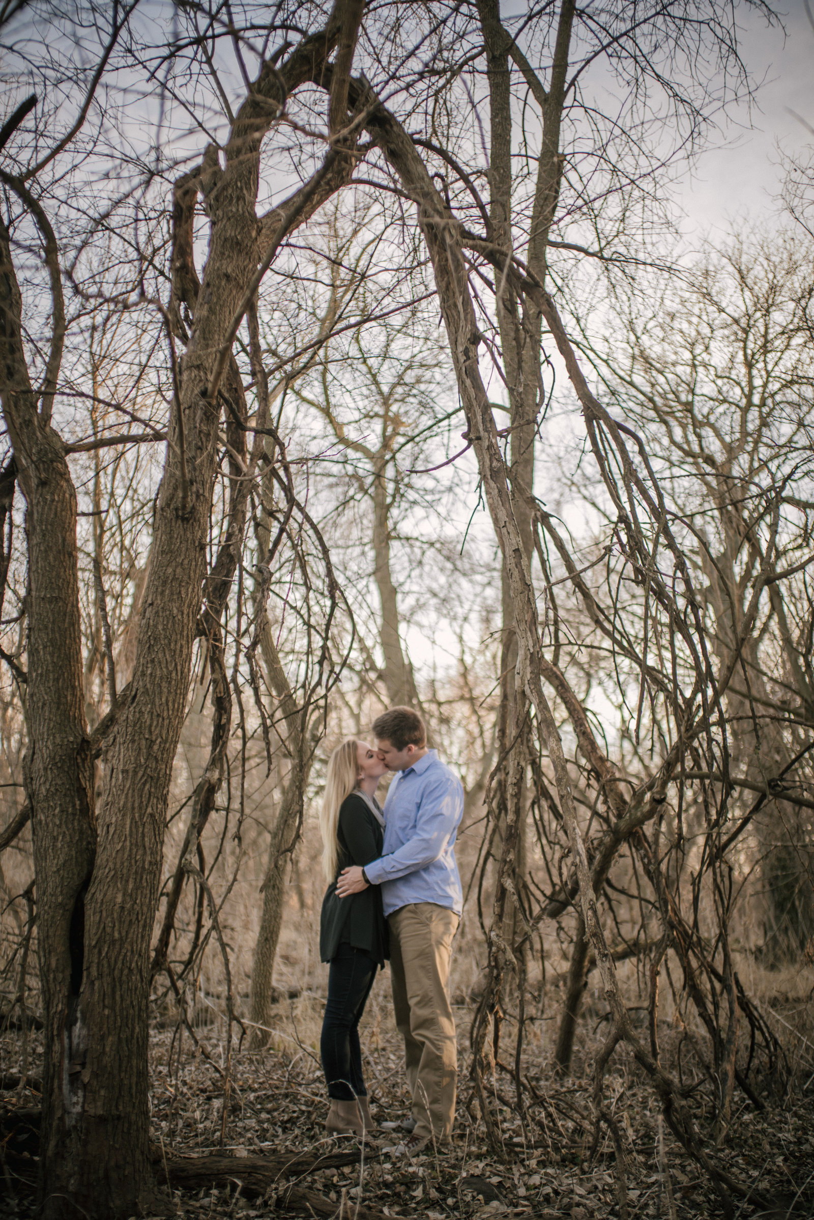 couple kissing under fallen branches