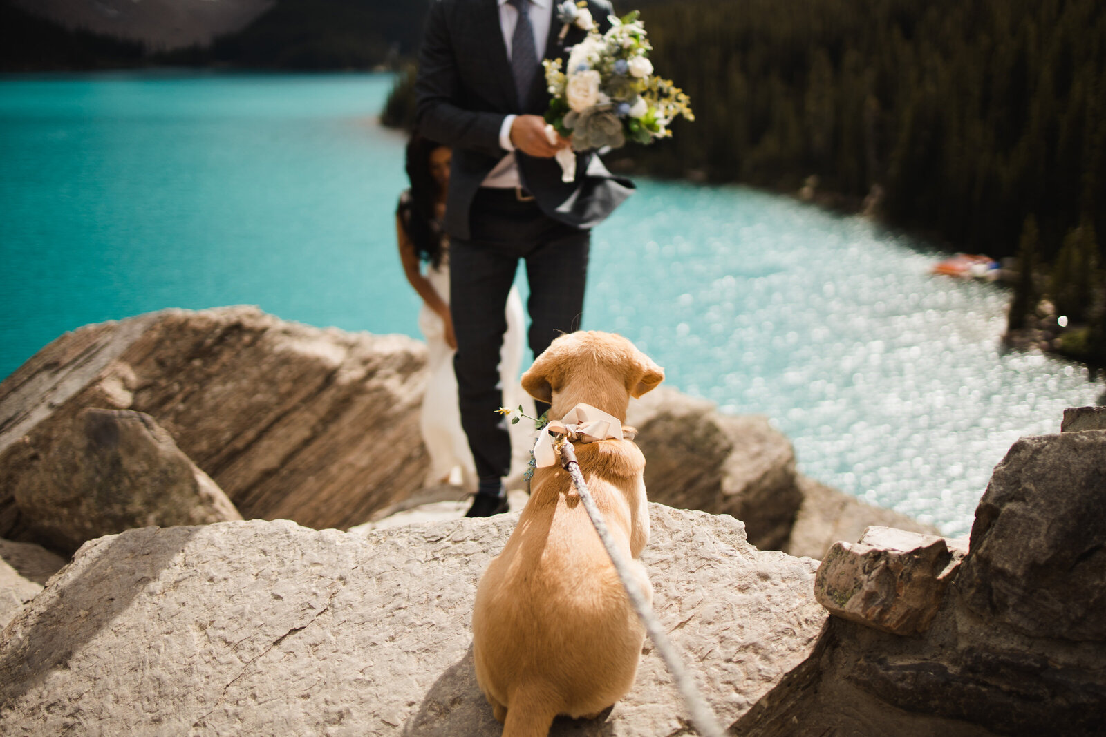 banff.wedding.photographer-8072