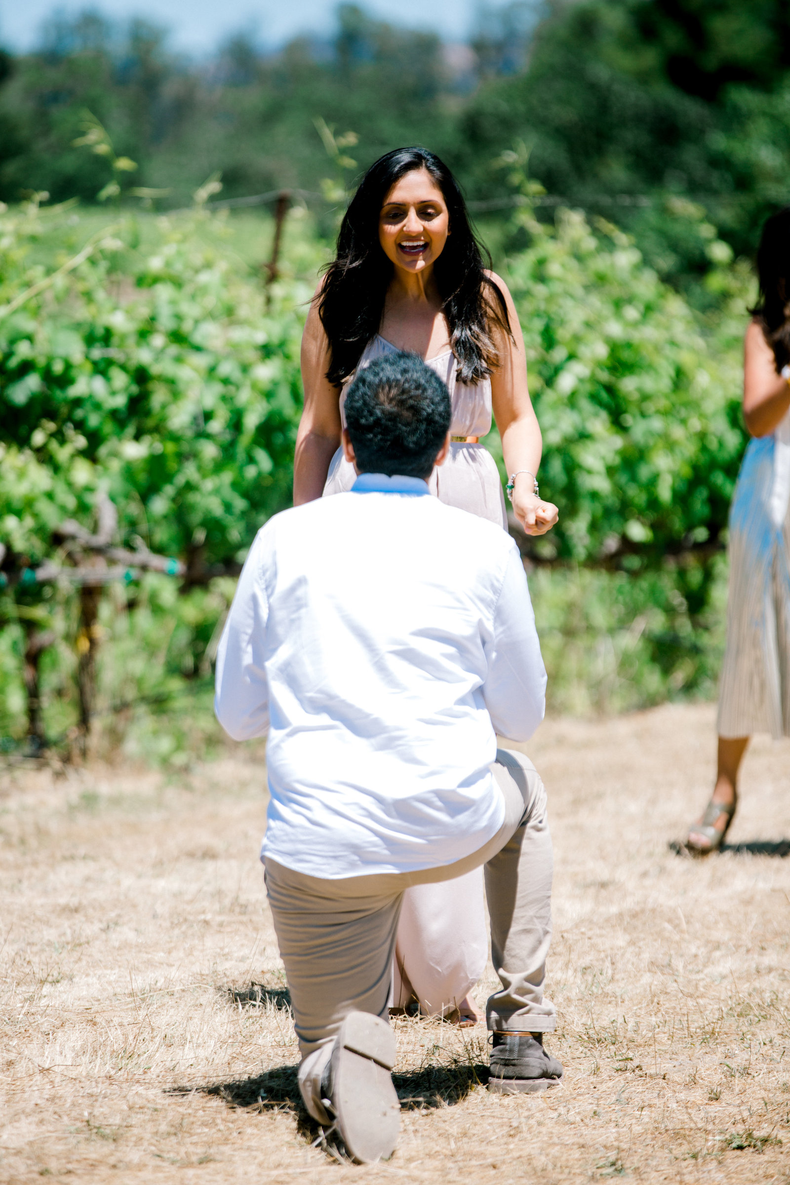 shocked and excited reaction during proposal at la crema winery in Windsor California
