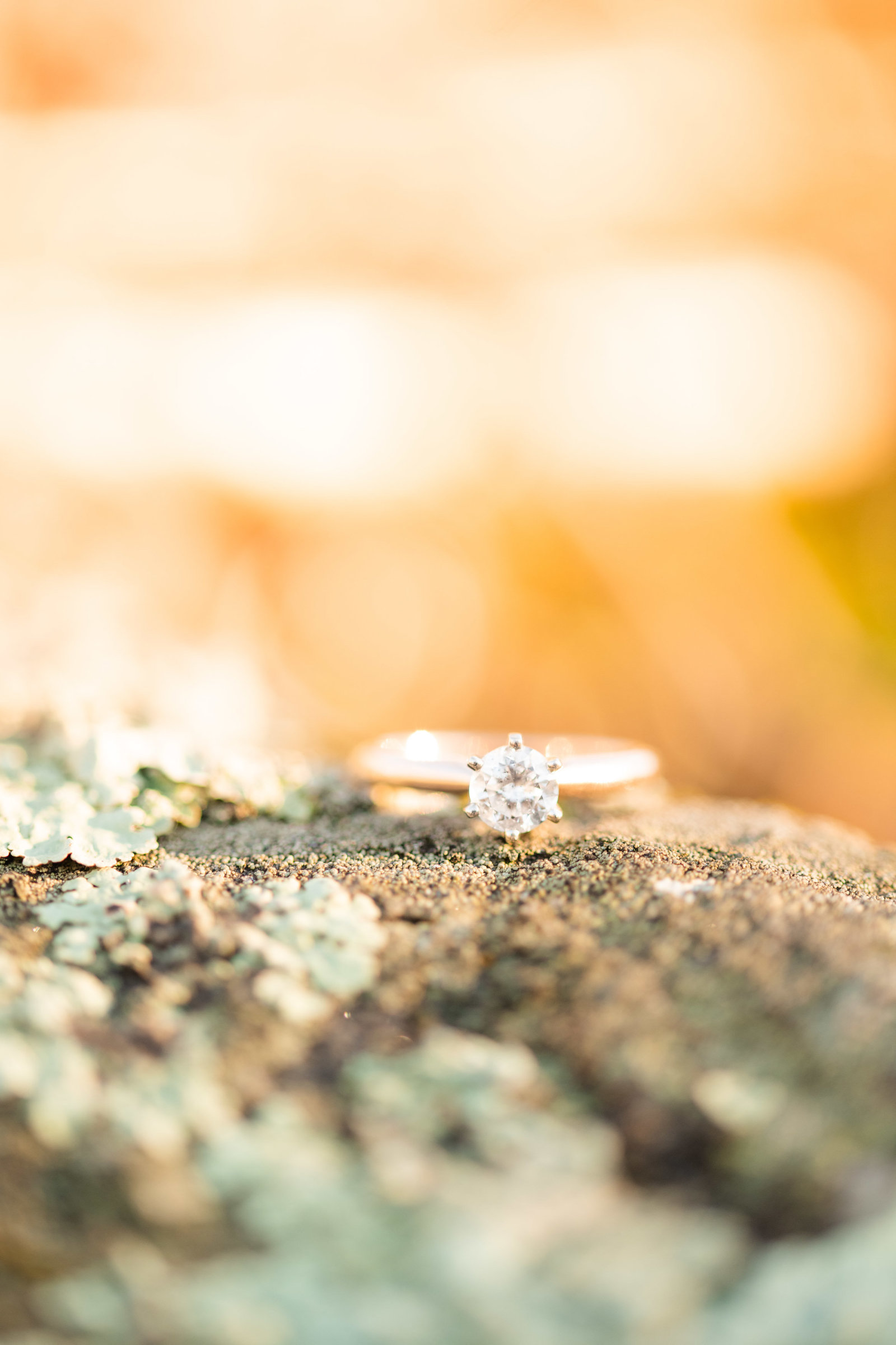 round diamond engagement ring on mossy rock at sunset