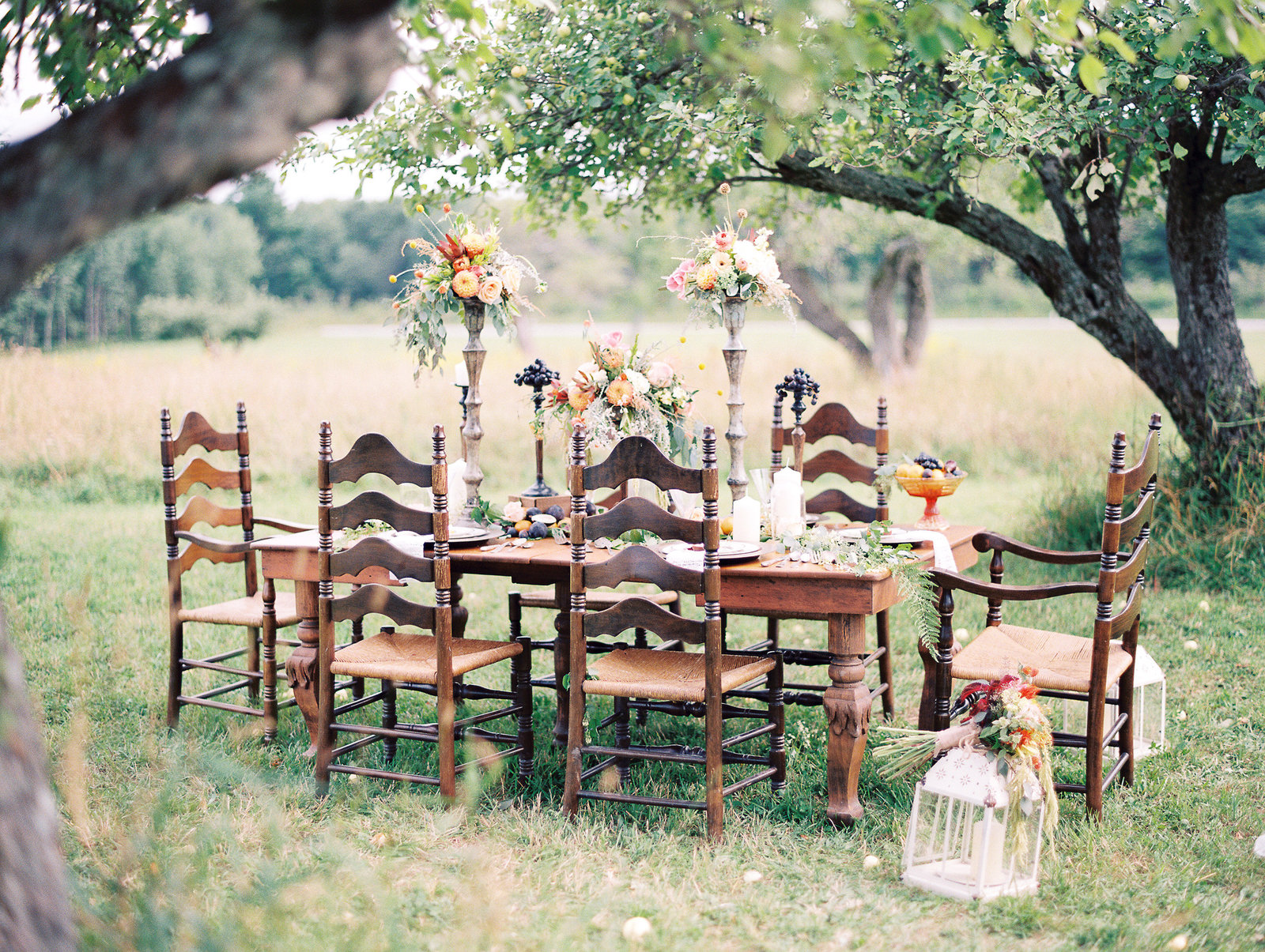 zen photography fiddle lake farm film-21
