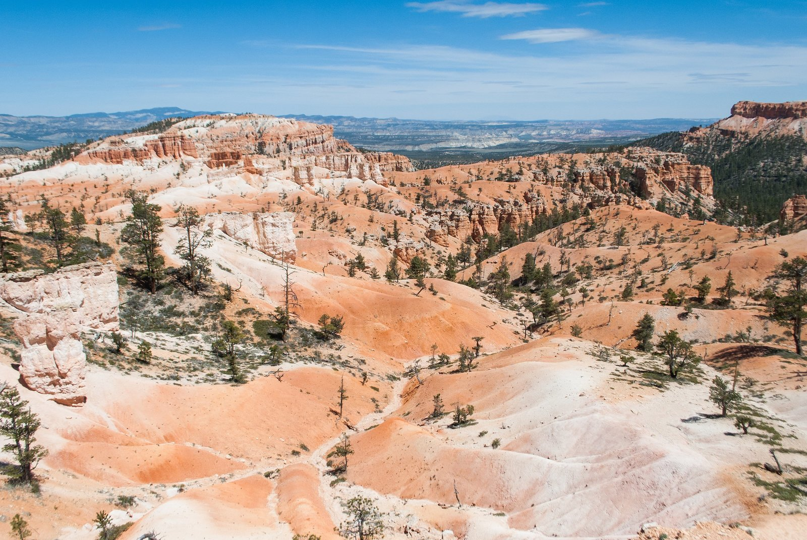 Landscape view of the red rocks of Bryce Canyon National Park in Utah