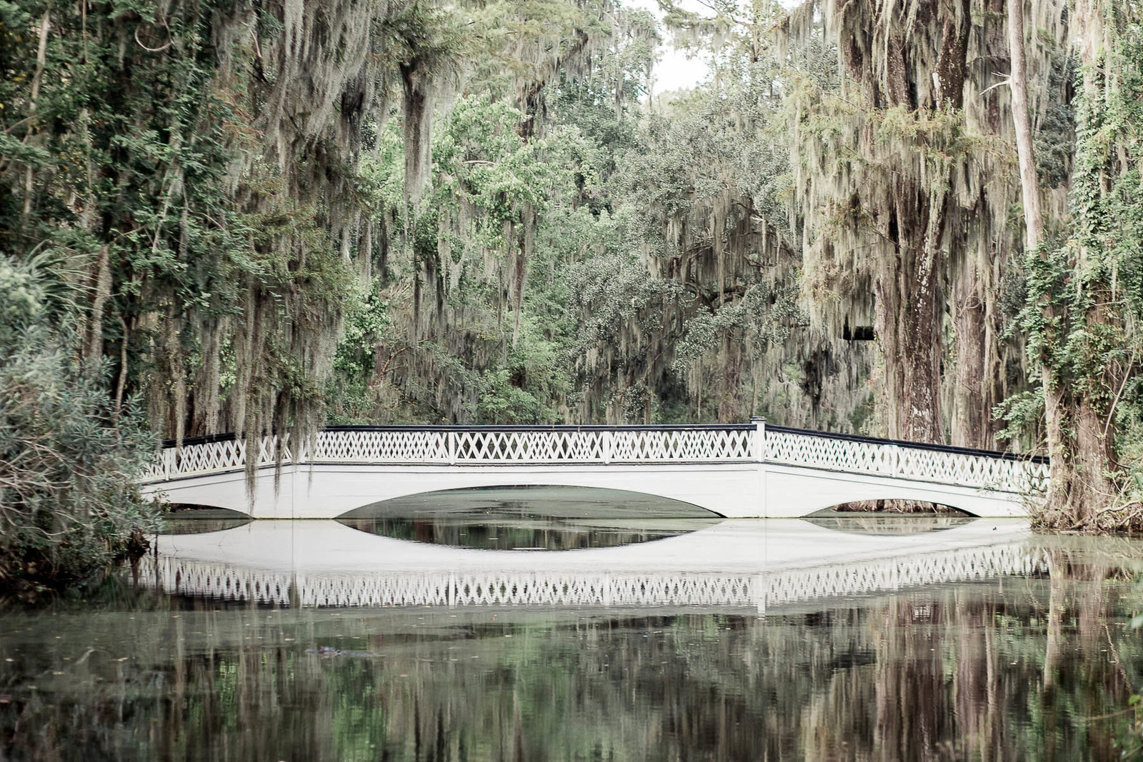 White bridge sits under oak trees, Magnolia Plantation, Charleston, South Carolina