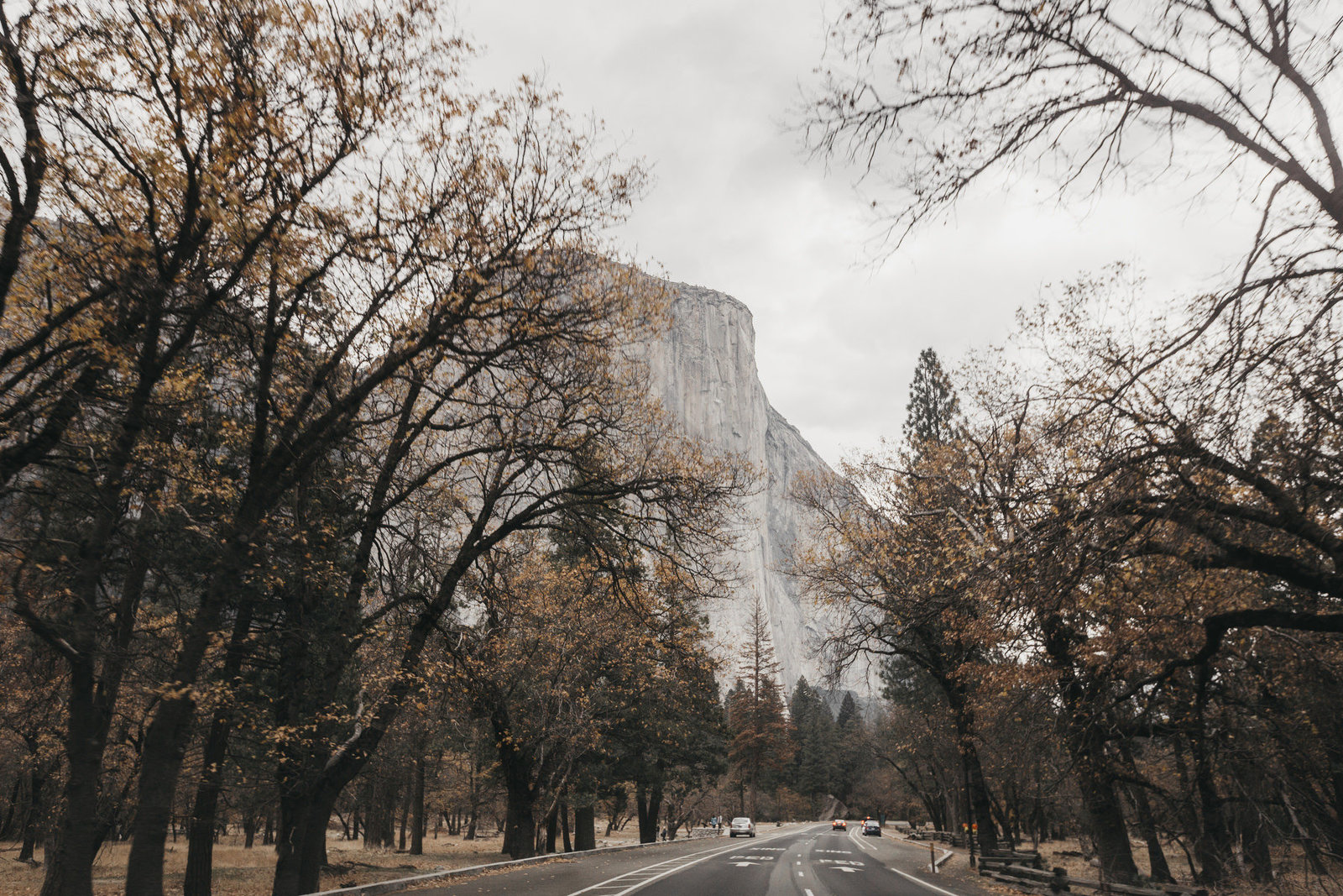 athena-and-camron-yosemite-elopement-wedding-photographer-elegent-valley-wedding37